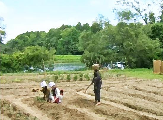 あさが来た ネタバレあらすじ感想8週46話【11月19日(木)】|NHK朝ドラfan