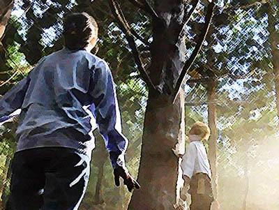 おかえりモネ あらすじネタバレ1週2話 ヒバの木に感動する百音のイラスト